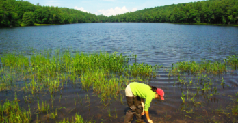 Axalta Partners with Stroud Water Research Center